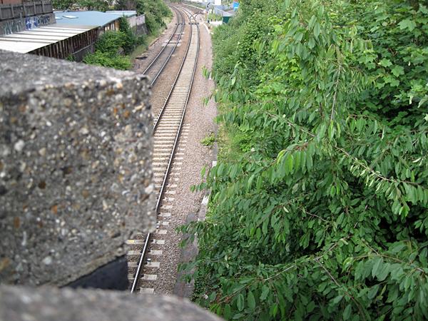 trail1_web